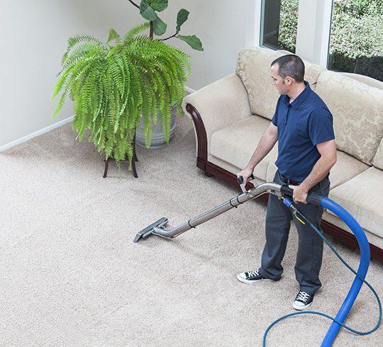 http://czyszczenie-wykladzin-dywanowych.pl/wp-content/uploads/2015/06/post-o-firmie-1-540x490.jpg
